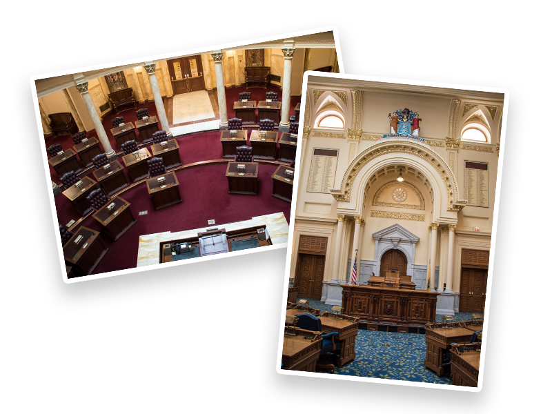 Student Guide to the Legislature - Two Houses